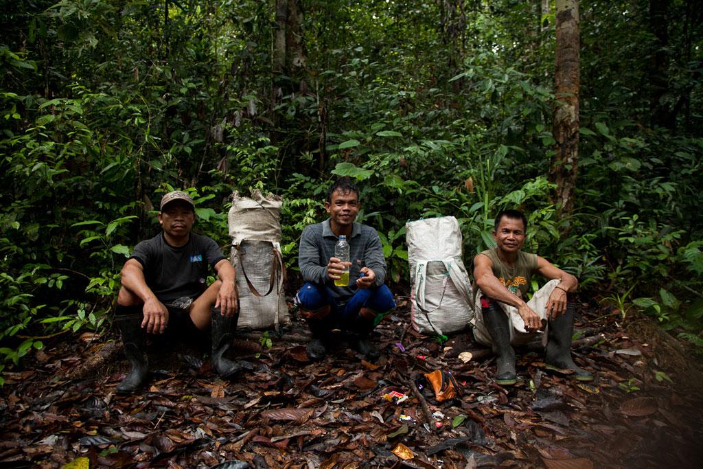 Climbing Bukit Batikap in Central Kalimantan