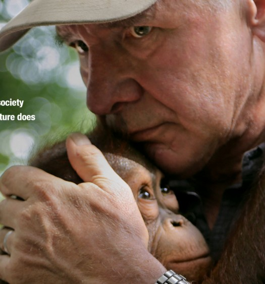 Year of Living Dangerously - Harrison Ford hugs a Baby Orangutan