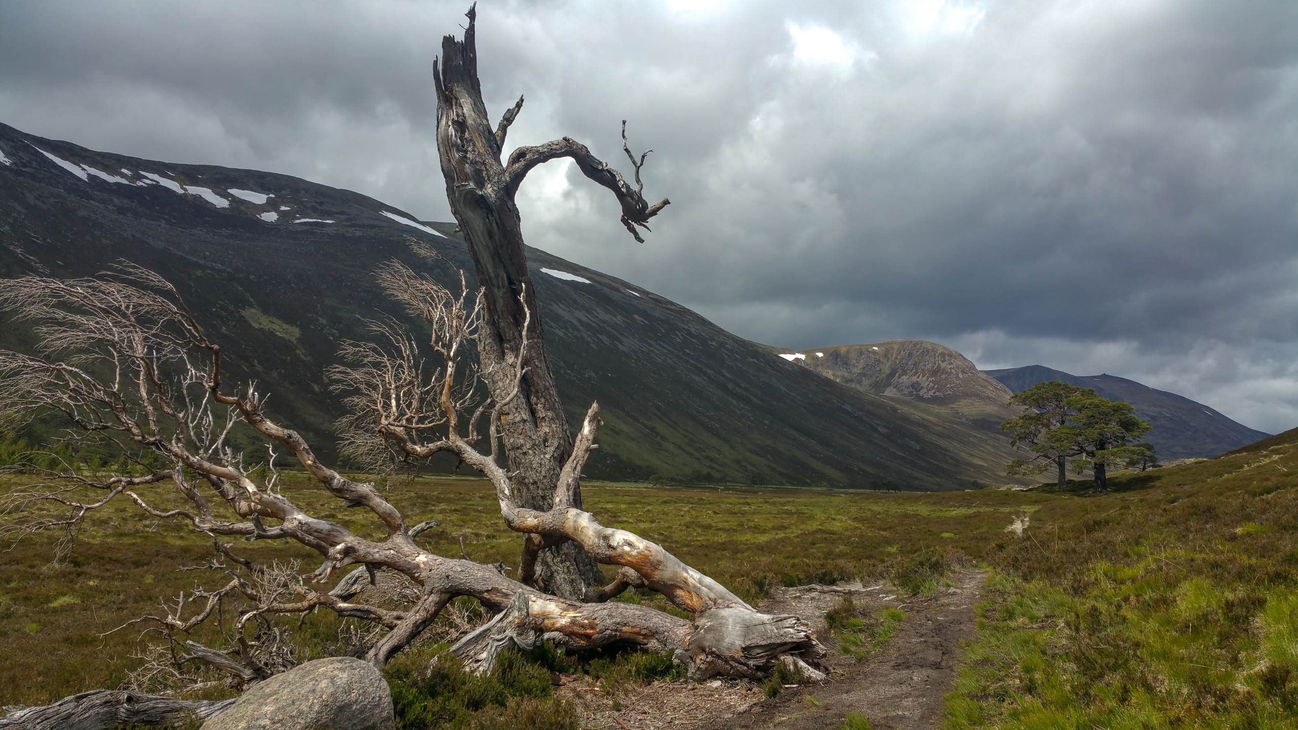 Cairn Gorm to Linn of Dee - Martin Holland